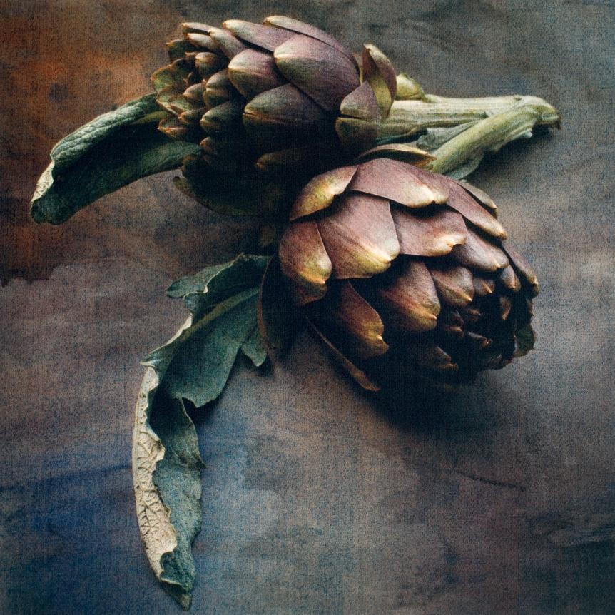 Springtime Artichokes © Cy DeCosse