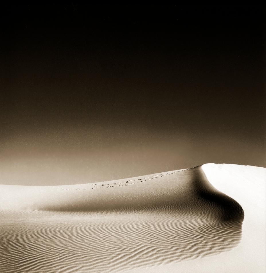 Duck Bill Dune © Jack Wasserbach