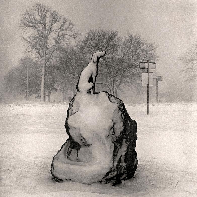 Belle Isle Snow Dog @ Bill Schwab