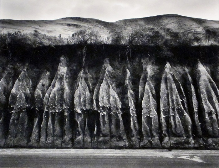 Erosion,1959 by Wynn Bullock,© Bullock Family Photography, LLC