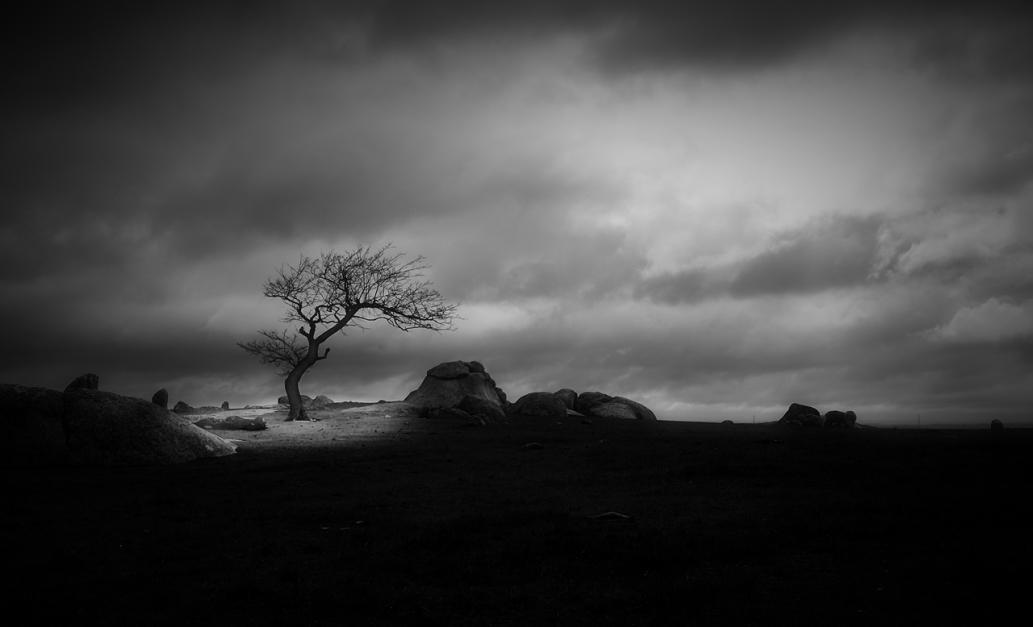Magic Light © Mihai Florea