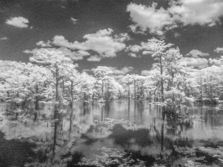 Cypress Clouds Reflections © Alan Ross