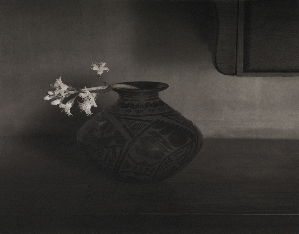Bog Bean Flower © Mark I.Nelson, Platinum/Palladium