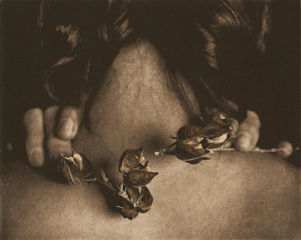 Remnants 4 © Karen Hymer