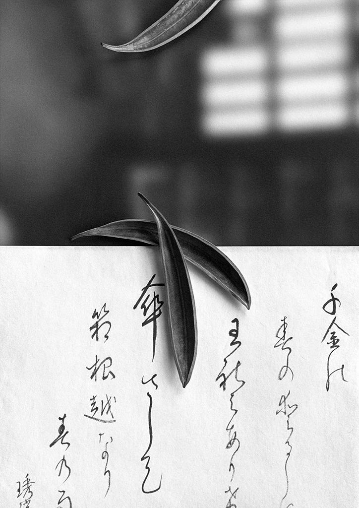 Landscapes of Presence u-153 © Jerry Takigawa