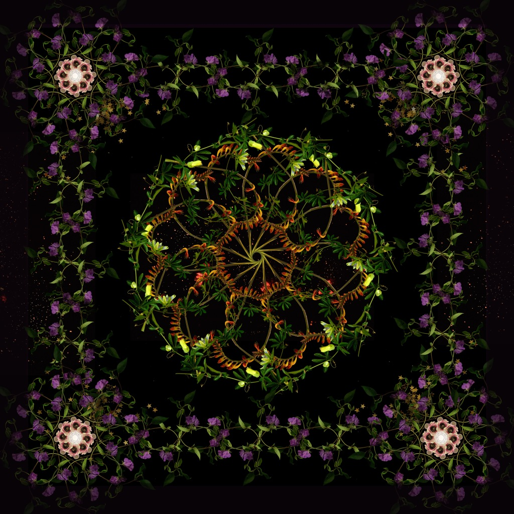 Floriculture 3 © Lisa Creagh