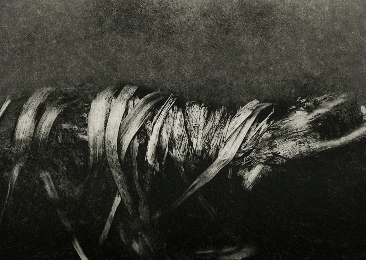 Photogravure 25 ©Henrieke Strecker