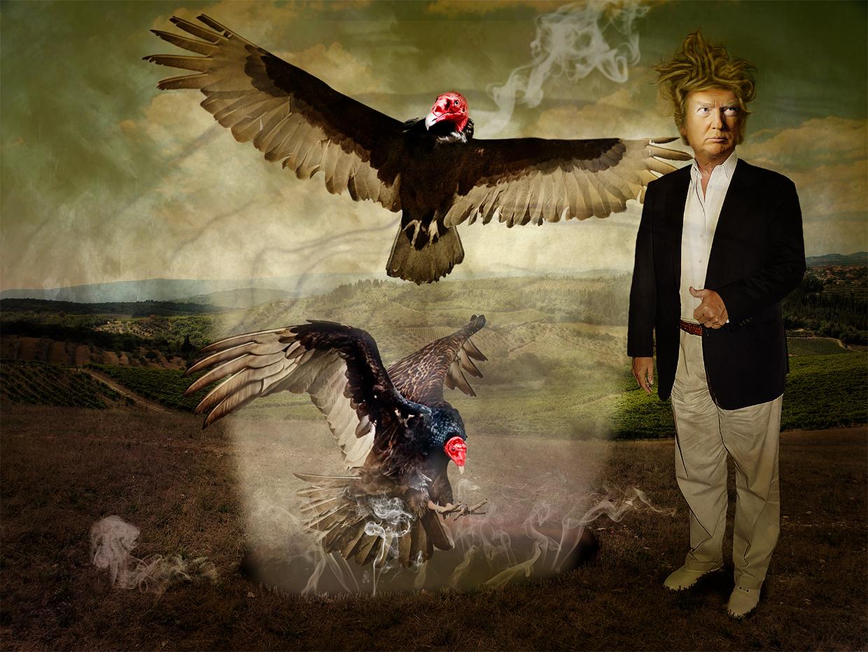 Not My President 30 © Leslie Hall Brown